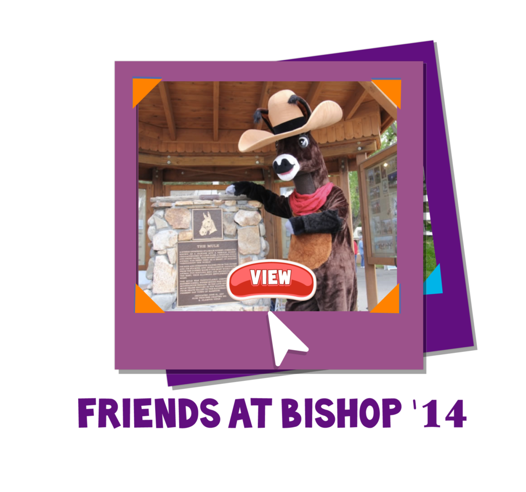Jasper Website Photo Icon_FRIENDS BISHOP 14
