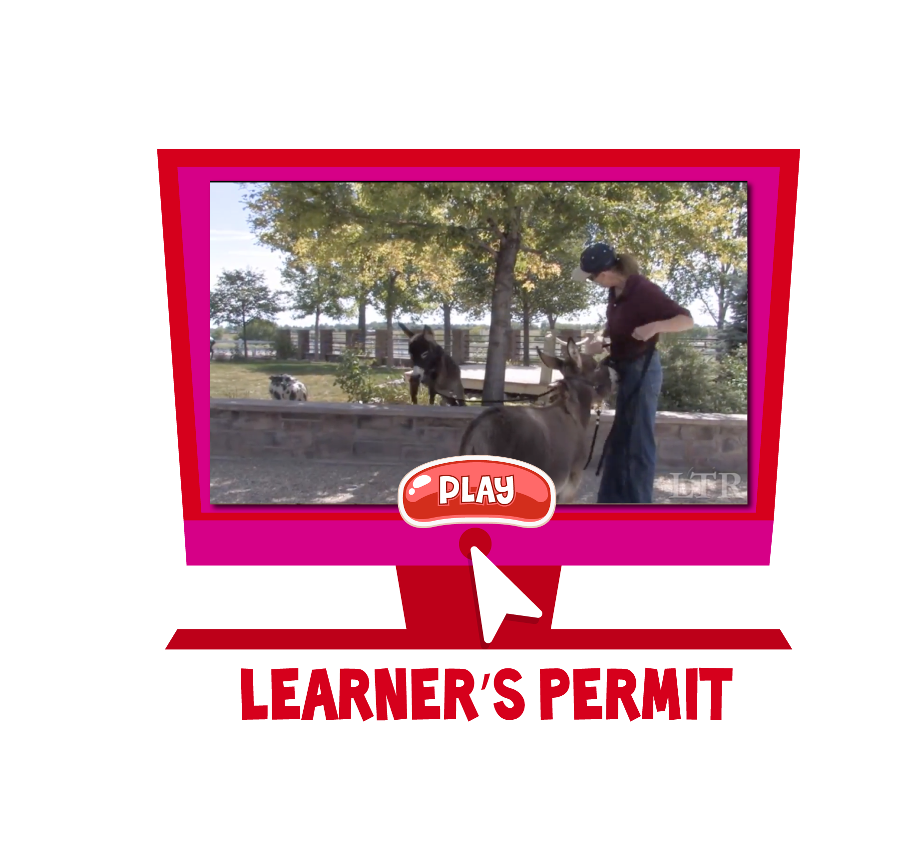 Jasper-Website-Video-Icon_Learner's-Permit